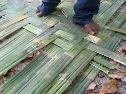 bamboo thatch