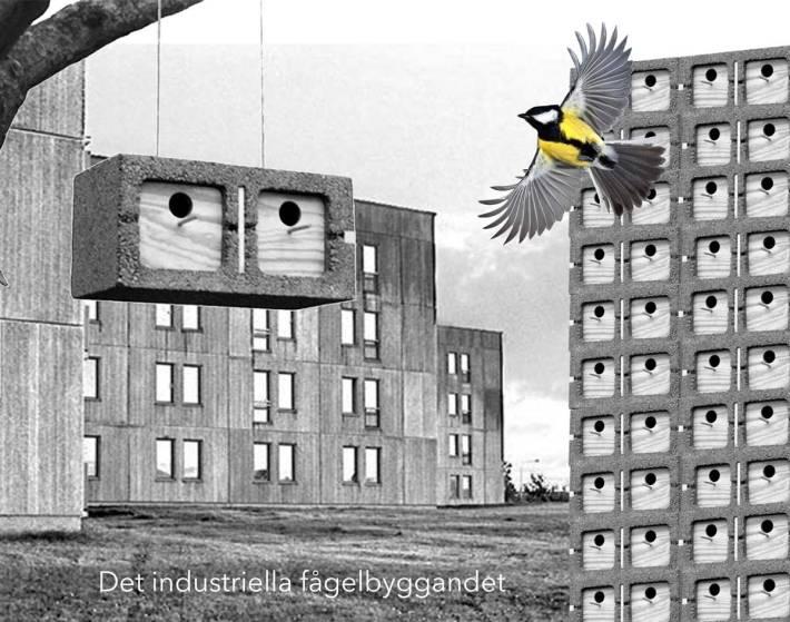 det-industriella-fågelbyggandet1